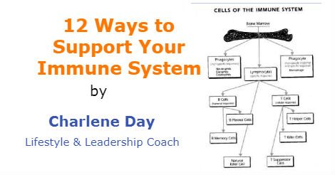 12 Ways to Support Your Immune System